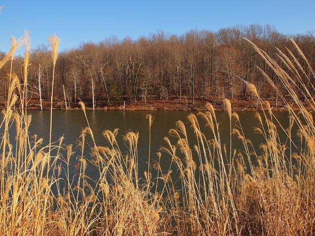 Black Hill Park, Gaithersburg, MD